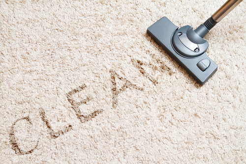 Clean Rugs Like A Pro House Cleaning Olathe